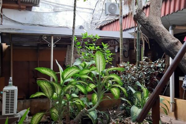 Dijual Rumah Tua Hitung Tanah di Tebet Raya Main Street Full Kuliner